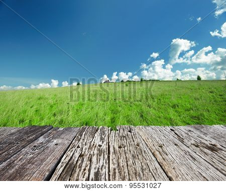 Green landscape with cloudy sky