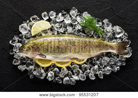 Trout Fish And Ingredients On Ice On A Black Stone Table Top View