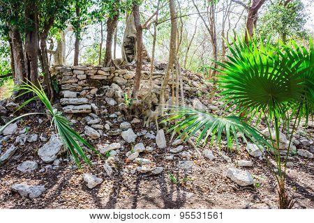 Mayan Ruins 5