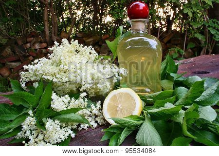 Syrup Of Flowers Elderberry