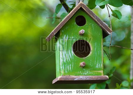 Close up of birdhouse hanging from tree