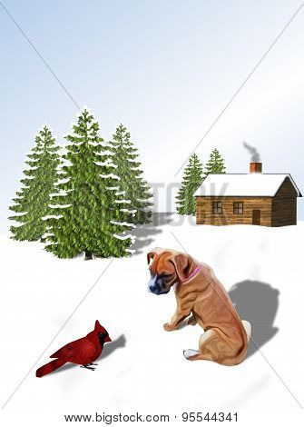 Boxer Pup and Cardinal