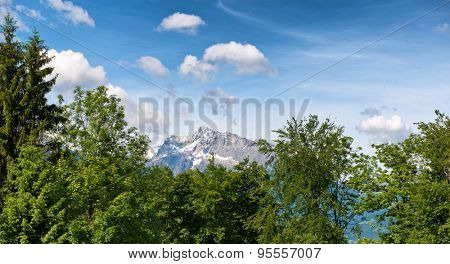 Close up of green tree tops, snow-capped mountain peak visible in background beneath blue sky with white clouds