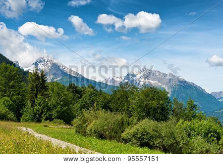 Pathway through grassy meadow with lush green trees, snow-capped mountain vista in backdrop beneath blue sky and white clouds