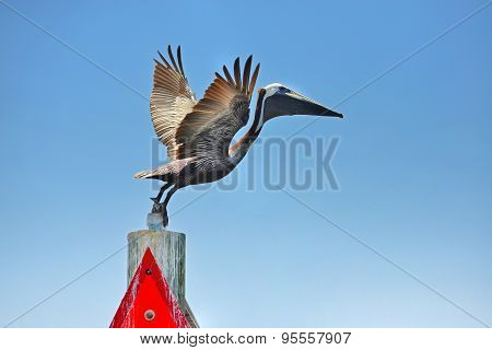 Pelican getting ready to fly