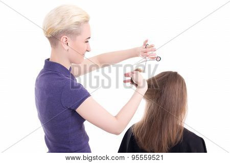 Woman Hair Stylist Doing Haircut To Client Isolated On White