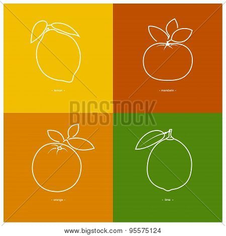 Mandarin,orange,lemon,lime