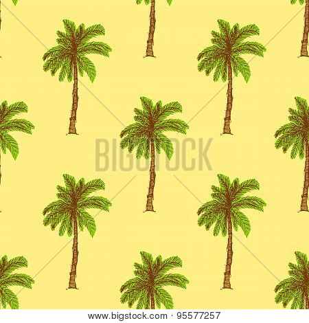 Sketch Palm In Vintage Style