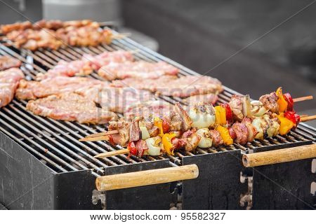 Grilled skewers on an outdoor fireplace (shallow DOF).