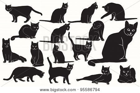 Set of vector black cats in various positions with basic outlines included