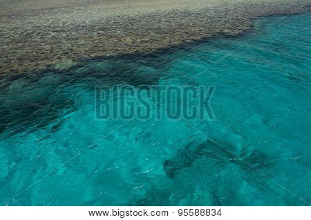 Tropical Clear Blue Water and Corals