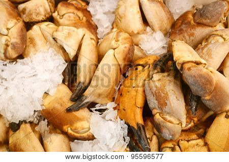 Crab claws in ice at the market
