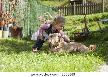 Baby Petting Dog