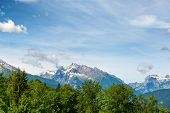stock photo of snow capped mountains  - Green fir trees with rocky snow - JPG