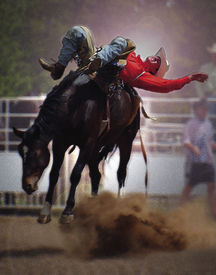 foto of bucking bronco  - bronc rider at rodeo getting ready to make the time painting  - JPG