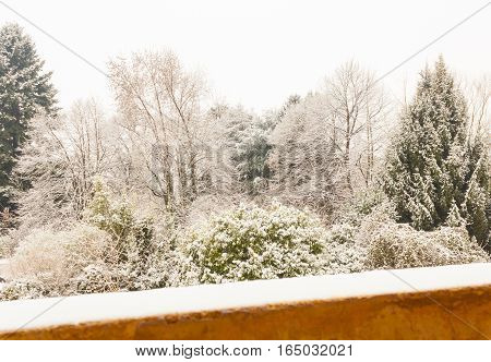 view from the balcony of a snowy landscape / a white winter landscape