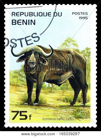 STAVROPOL RUSSIA - January 09 2017 : A Stamp sheet printed in Benin shows Syncerus caffer caffer (African buffalo) circa 1995