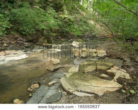 Multiple Concretions in a stream at a Delaware County Ohio Park