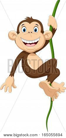 Vector illustration of cute monkey cartoon hanging