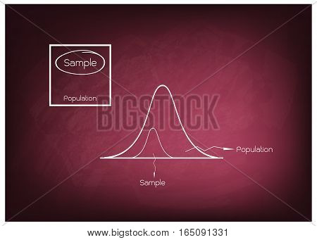 Business and Marketing or Social Research Process Gaussian Bell or Normal Distribution Curve with The Sampling Methods of Selecting Sample of Elements From Target Population to Conduct Survey on Chalkboard..