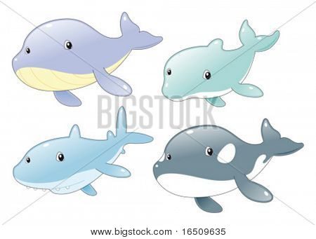 Ocean Fish Family: Dolphin, Shark, Whale and Killer Whale