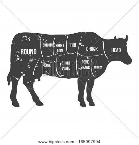 Vintage butcher cuts of beef diagram vector illustration