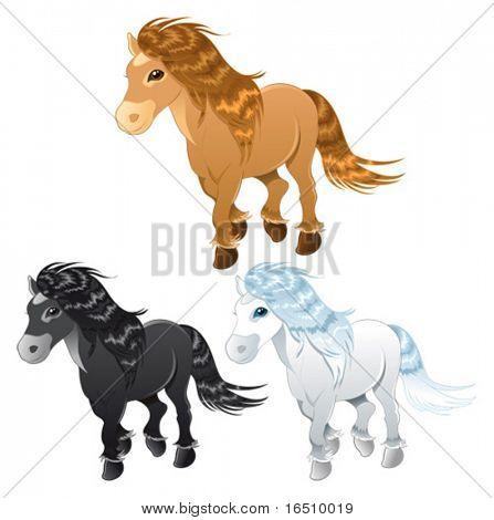 Three horses or pony. Funny cartoon and vector animal characters