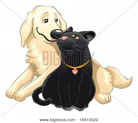 Lovely cat and dog. 