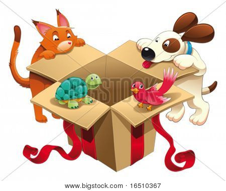 Gift and pets. 