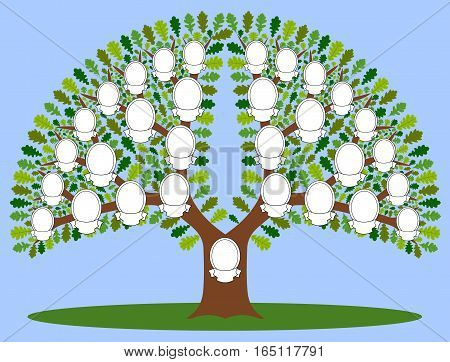 Family tree. The file has four layers: background, stem, leaves and frame. Four kinds of leaves.