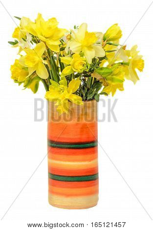 Yellow Daffodils (narcissus) Flowers In A Colored Vase, Close Up, White Background.