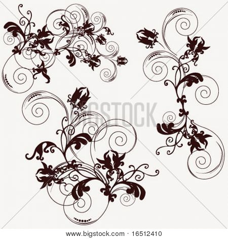 Vector Flower ornament isolated