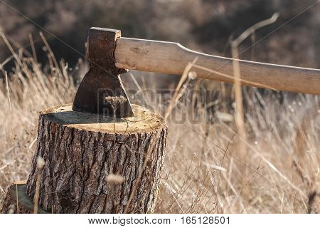 chopping wood with ax. Ax stuck in a log of wood. Nature
