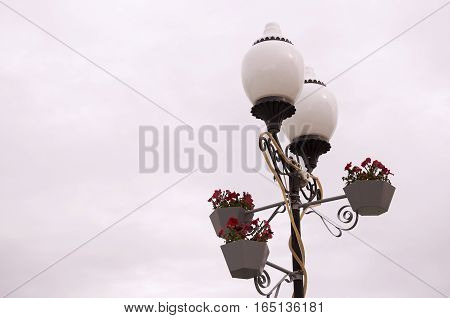 Lantern with blooming flowers. Autumn with dark sky 1