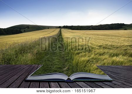 Beautiful Landscape Of Golden Sunset Across Field Of Barley In Summer Coming Out Of Pages Of Book