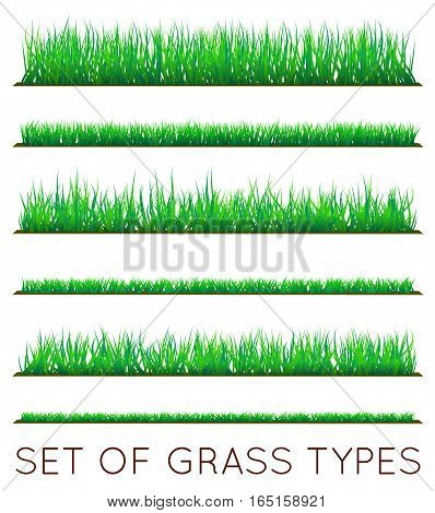 Set of Backgrounds Of Green Grass, Isolated On White Background, Vector Illustration