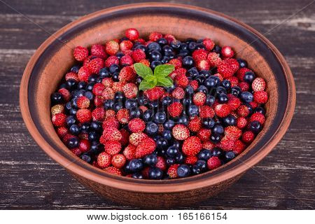 Fresh strawberries and blueberries wild berry. Close up
