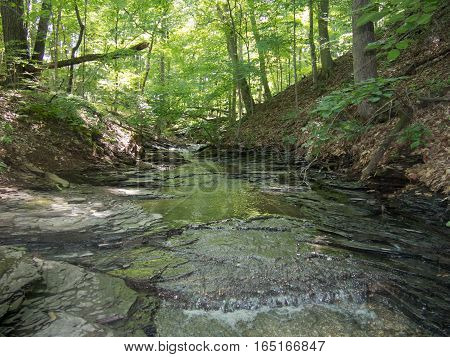 Quiet Peaceful and Tranquil Stream at a Delaware County Park in Ohio