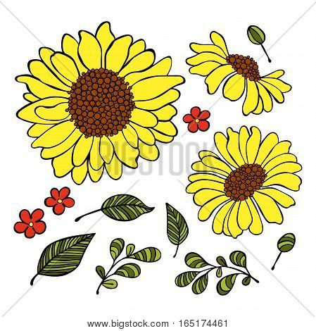 Sunflower. Floral print. Flowers and leaves. Isolated vector objects on white background.