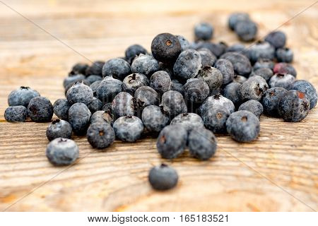 berry blueberry hill on the wood closeup