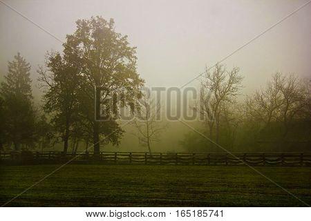 Rural Village Scenery In Morning Fog