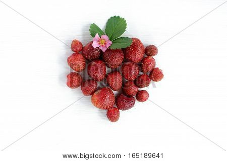ripe strawberries decomposed light wooden surface top view / favorite red berry