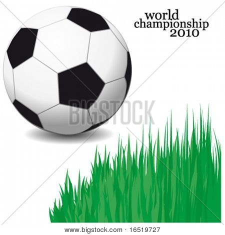 Vector soccer ball. Isolated shiny soccer ball