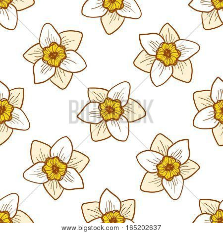 Narcissus flowers seamless pattern, hand drawn tileable vector background. Yellow and golden plants on white
