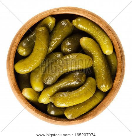 Cornichons, pickled cucumbers in wooden bowl. Green tart French pickles, made from small gherkins. Gherkin, commonly known as pickle. Isolated macro food photo close up from above on white background.