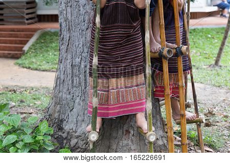Thailand Hill Tribe Standing On Bamboo Showing Traditional Dance For Tourist