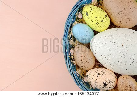 Easter colorful quail eggs of different sizes in the blue basket on a pale pink background.