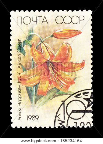 SOVIET UNION - CIRCA 1989 : Cancelled postage stamp printed by Soviet Union, that shows Lilly.
