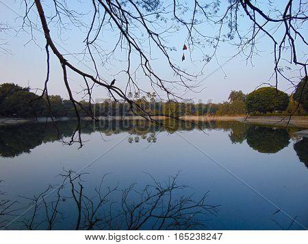 scenic view at Victoria Memorial garden, Kolkata India