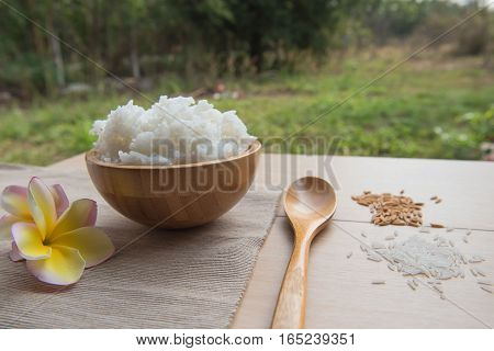 Cooked rice in a wooden bowl and spoon , paddy on a wood background.